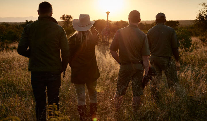 luxury-safari-kruger-national-park