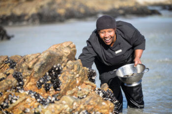 mussel-picking-activities-hermanus-south-africa