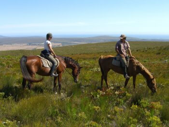 horse-riding activities-near-hermanus