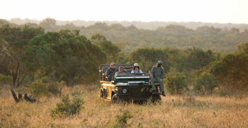 wildlife-game-drive-safari-vehicle-kruger