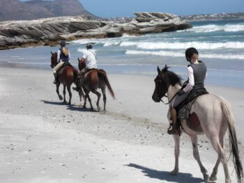 horse-riding-activity-hermanus-cape-town