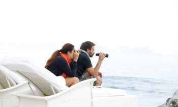 marine-life-whale-watching-boutique-hotel-hermanus