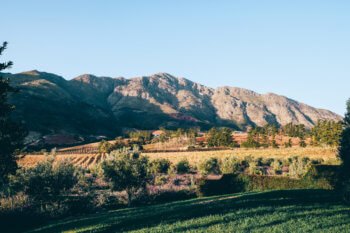 franschhoek-mountains-dining