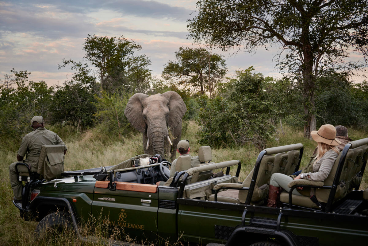 -luxury-safari-private-honeymoon