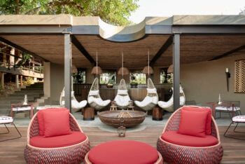 bush, bar, luxury, safari, kruger